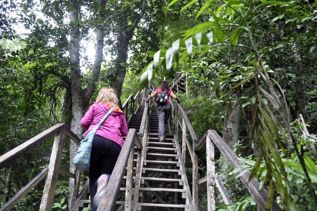 TIKAL - Un mundo en el corazón de la selva del Petén ...